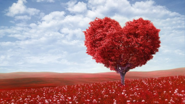 the-tree-of-love-559